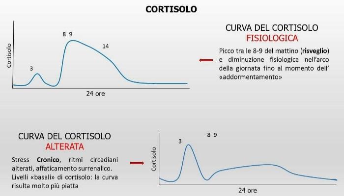 Cortisol Circadian Rhythms